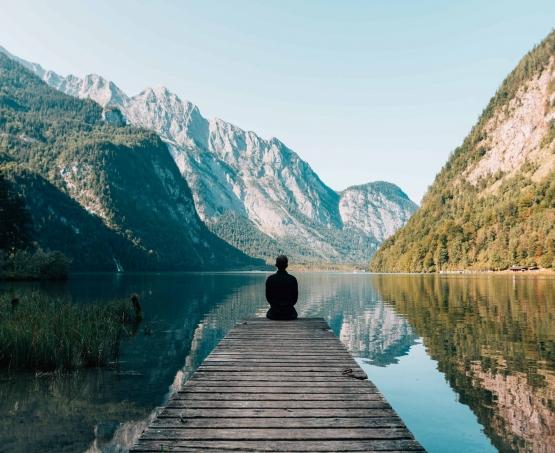 Wellbeing Wonderland